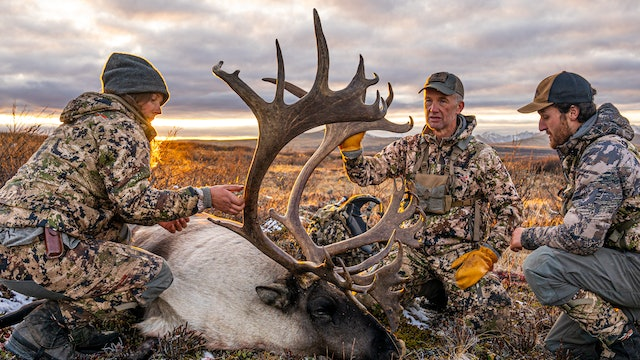 Hunt of a Lifetime | British Columbia Mountain Caribou and Moose