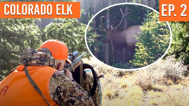 SHOTS FIRED on Opening Day | Colorado First Season Elk (EP. 2)