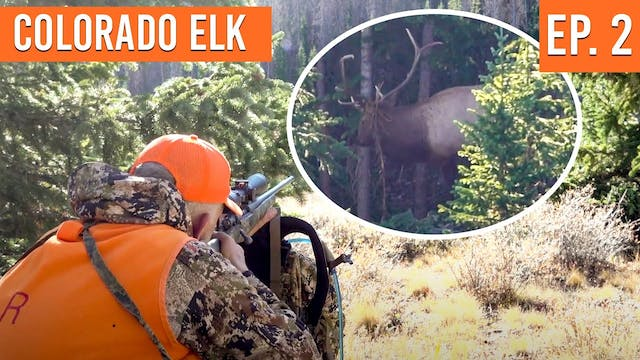 SHOTS FIRED on Opening Day | Colorado...