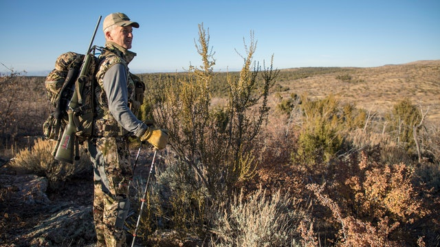 Kaibab Mule Deer - Arizona Enchantment