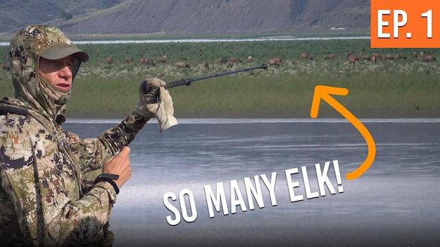 We Found The Mega-Herd! | Montana Archery Elk (EP. 1)
