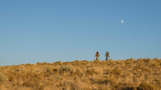 Nevada Pronghorn - Hunting the Silver State Sage