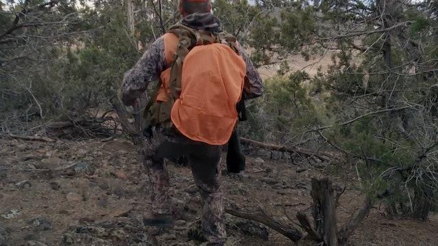 Fresh Tracks: Season 1, Episode 6 - Colorado Mule Deer