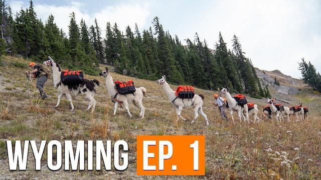 Backcountry Mule Deer Hunt   Wyoming (EP. 1)