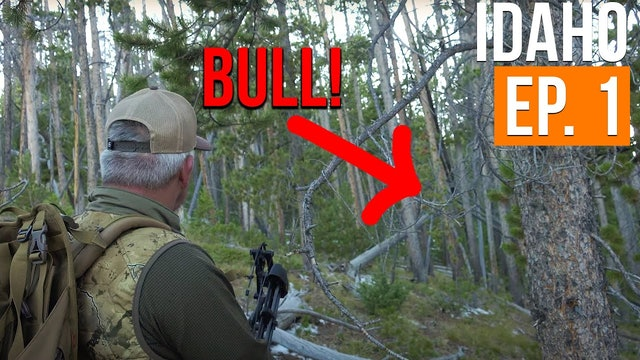 Bad Weather and A Bugling Bull | Idaho Archery Elk (EP. 1)