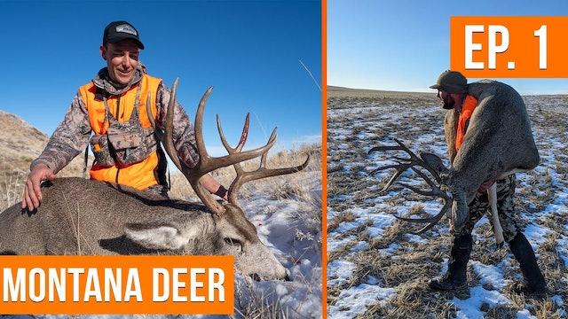 RUTTING BUCKS on Public Land | Montana Deer (EP. 1) 🦌
