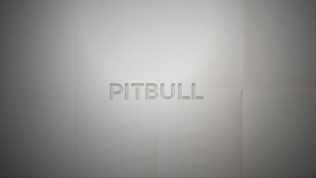 Live With: Steve Poltz - Pitbull