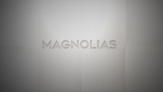 Live With: Leah Blevins - Magnolias