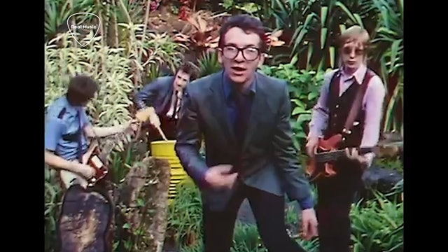Jukebox Journey: Elvis Costello - What's So Funny 'Bout Peace Love Understanding
