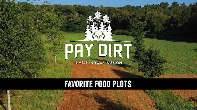 How to Select a Killer Food Plot Location