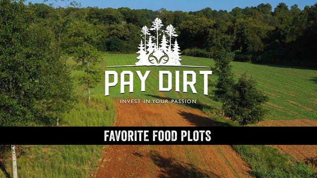 How to Select a Killer Food Plot Loca...