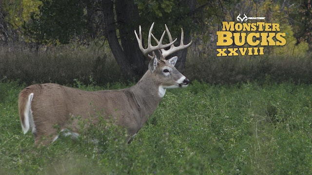 David Blanton's Montana Monarch Over a Buck Decoy | Realtree's Monster Bucks