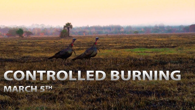 3-5-18: Controlled Burning | Spring Thunder