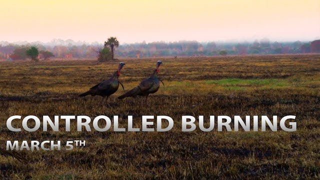 3-5-18: Controlled Burning for Turkey...