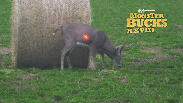 Bryan Brown's Massive Nebraska Buck |...