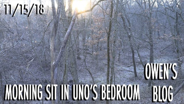 Owen's Blog: Bedding Area Hunt for Uno