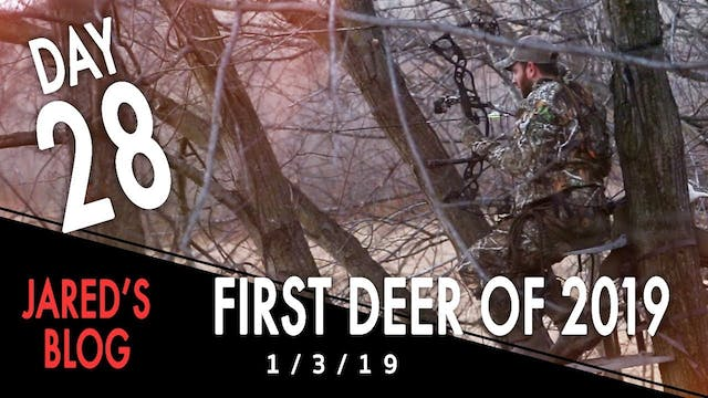 Jared's Blog: First Deer of 2019