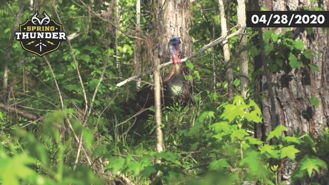 Craziest Turkey Hunt Ever? Longbeard ...