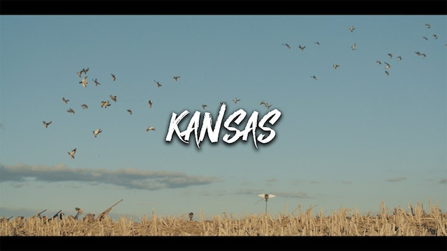40 Mallards in 40 Minutes | Dry-Field Duck Hunting in Kansas | DayBreak Outdoors