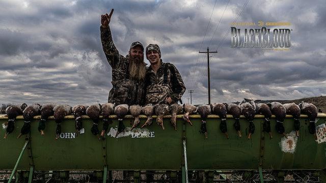 Dry-Field Pacific Honkers | Last-Chance Washington Ducks | Black Cloud