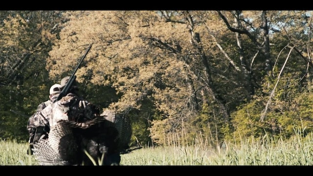 Hunting Henned-Up Gobblers | A First Turkey in Missouri | DayBreak Outdoors
