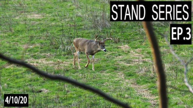 Staging Plot Stands | Bill Winke Treestand Location Series