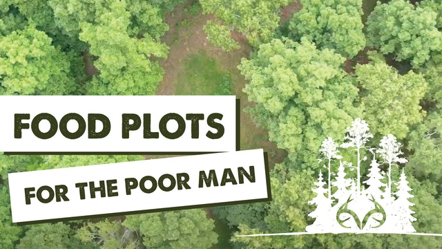 Creating Poor Man Food Plots