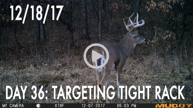 Winke Day 36: Targeting Tight Rack