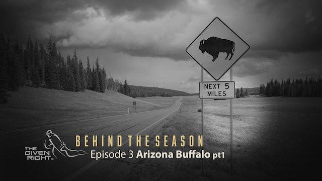 Hunting an Arizona Archery Buffalo   Behind the Season   The Given Right