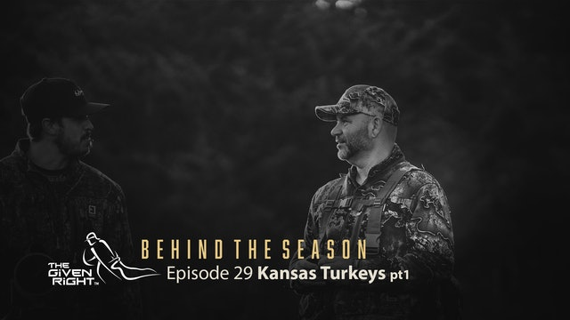 "Putting the ""Hurts"" on Kansas Birds 