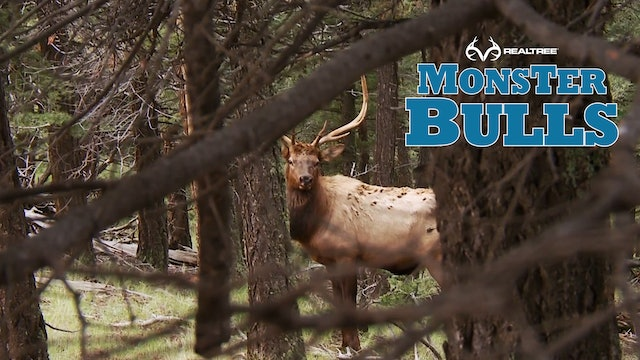 7 Days Of Hunting Finally Pays Off | Screaming New Mexico Bull