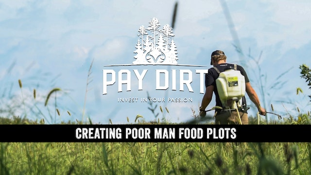 Creating Poor Man Food Plots