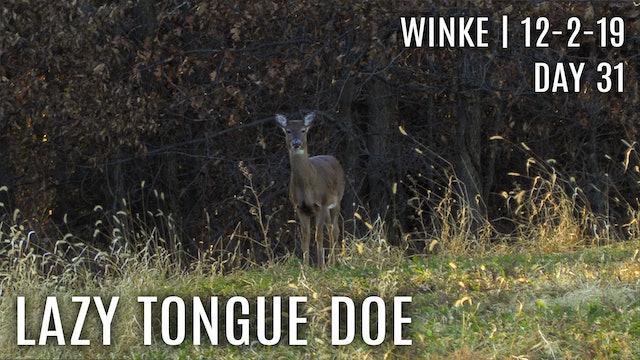 Winke Day 31: Lazy Tongue Doe
