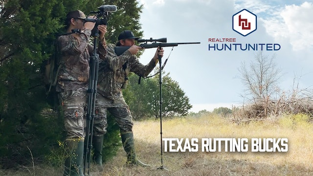 Rattling in Texas Rutting Bucks