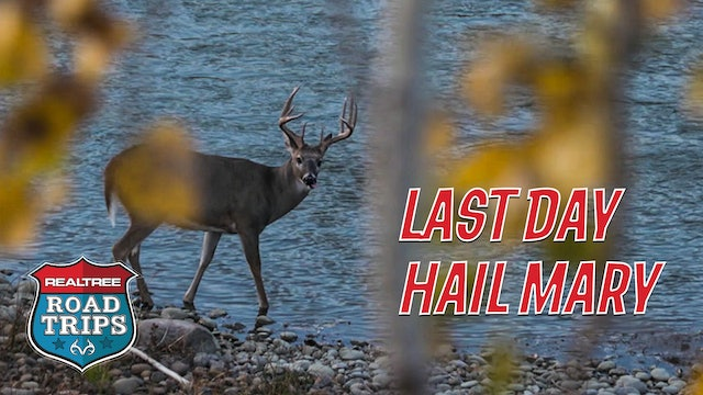 Target Bucks Everywhere | A Last-Day Hail Mary | Realtree Road Trips