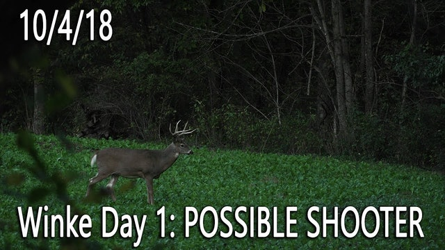 Winke Day 1: Possible Shooter