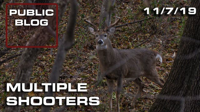 Public Land Blog   Multiple Shooters