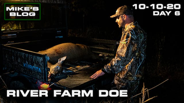 Mike's Blog: A River Farm Doe | Early...