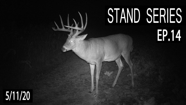 The Sidehill Stand | Bill Winke Treestand Location Series