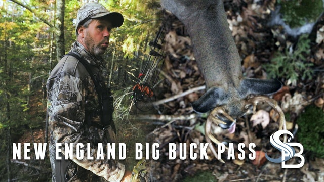 Great Encounters with New England Bucks | Hunting Northeastern Deer | Sea Bucks