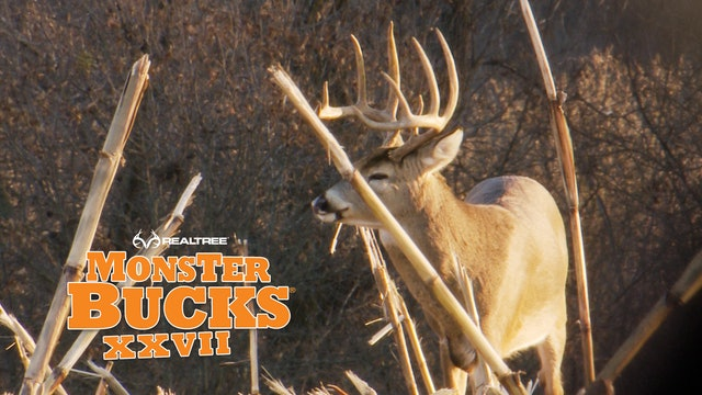 Kandi Kiski's Thanksgiving Afternoon Monster Buck