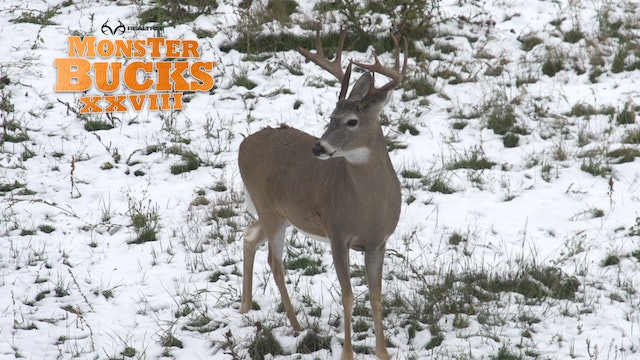 Chris Ashley's Montana Monarch | Realtree's Monster Bucks