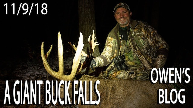Owen's Blog: Giant Buck Down!