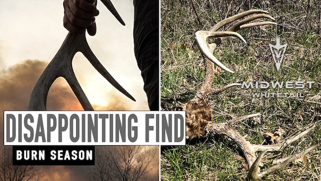 4-30-18: Disappointing Find, Burn Season | Midwest Whitetail