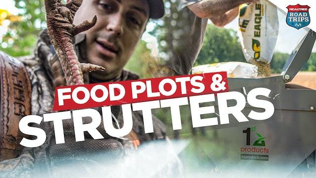 Late-Season Strutter Action | Summer Food Plot Planting | Realtree Road Trips