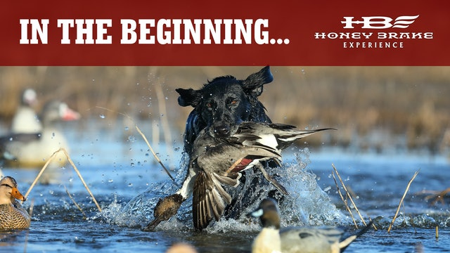 Pre-Season Waterfowl Prep | Opening Week of Duck Season | Honey Brake