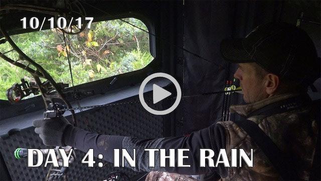 Winke Day 4: Hunting In The Rain