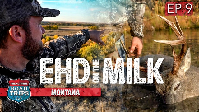 EHD Again on the Milk River | This Isn't Good | Realtree Road Trips