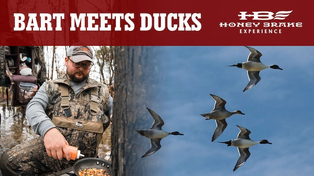 Bart Likes Likes the Ducks | Timber 2 Table on the Water | Honey Brake
