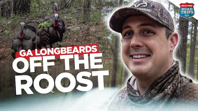 Busting Beaks Right Off the Roost | Giant Georgia Gobblers | Realtree Road Trips
